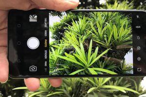 Oppo F7: Chiếc smartphone 'tai thỏ' đáng giá cho người thích selfie