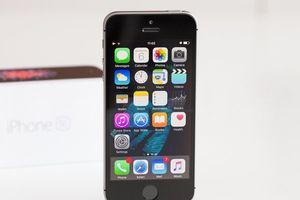Vào tháng sau, iPhone SE 2 'mới toanh' có thể sẽ trình làng