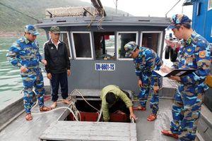 Quảng Ninh: Bắt giữ 7.000 con cá giò giống không rõ nguồn gốc