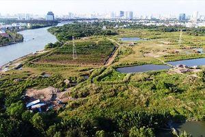 Bí thư TP. HCM Nguyễn Thiện Nhân chính thức vào cuộc vụ bán rẻ hơn 30ha đất công