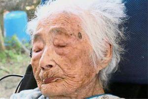Người già nhất thế giới đã qua đời ở tuổi 117