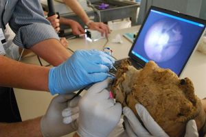 Bí ẩn xác ướp 4.000 năm tuổi