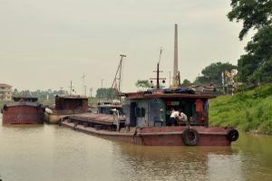 Tàu, hàng 'đỏ mắt' chờ cảng đầu mối sông Đuống