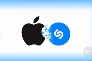 EU điều tra thương vụ Apple mua Shazam