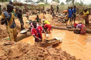 Công ty đào vàng của Trung Quốc bị tố hủy hoại vùng đất Cameroon