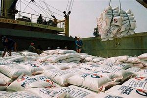 Cơ hội tỷ đô cho xuất khẩu Việt Nam tại thị trường châu Phi và Nam Á
