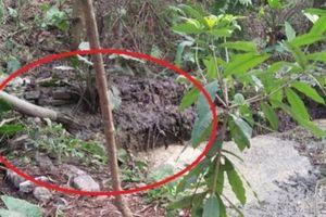 Chủ tịch Hà Nội yêu cầu kiểm tra 'chất thải bẩn đổ ra sông Nhuệ'