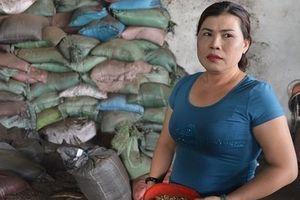Vụ cà phê nhuộm pin con Ó: Lộ rõ hành vi tàn độc từ lời khai các đối tượng