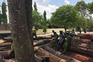 Bộ Công an bắt vụ phá rừng ở Vườn Quốc gia Yok Đôn, tập kết gỗ cạnh đồn biên phòng