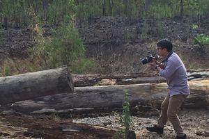 Triệu tập ông chủ bãi gỗ tại vườn quốc gia Yok Đôn