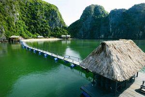Vườn quốc gia Cát Bà Hải Phòng: Có hay không việc phá vỡ cảnh quan thiên nhiên?