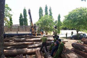 Bộ Công an 'tóm gọn' vụ phá rừng quy mô lớn ở Vườn Quốc gia Yok Đôn