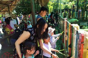 Nhiều chương trình văn hóa văn nghệ diễn ra trong 4 ngày nghỉ lễ tại TP Hồ Chí Minh
