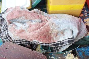 Tìm thấy thi thể người phụ nữ lái đò nghi bị giết, cướp ở Tiền Giang