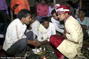 Đang ngồi tiếp chuyện với khách trong lễ cưới, chú rể bị bắn tử vong