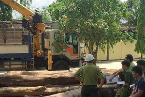 Vụ gỗ lậu ở Đắk Nông: Tài xế 'qua mặt' bao nhiêu trạm kiểm soát?