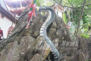Những chuyện dựng tóc gáy quanh ngôi đền thờ rắn ở Tuyên Quang