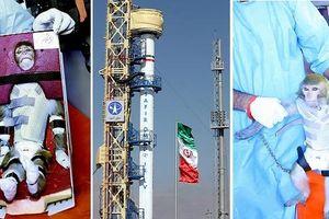 Iran thắng cấm vận, vượt mặt khoa học công nghệ Israel?