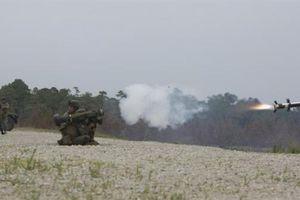 Tên lửa Javelin Mỹ cho Ukraine mất tích?