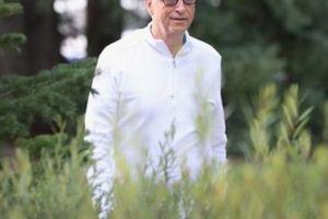 Tỷ phú Bill Gates lên tiếng ủng hộ cây trồng biến đổi gen GMO