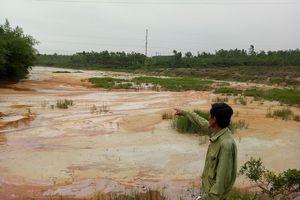 Nhà máy cao lanh gây ô nhiễm nhiều năm ở thành phố Đồng Hới