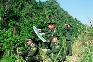 Hiện đại hóa công nghệ giám sát rừng