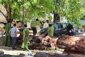 Khởi tố bị can 5 đối tượng vụ buôn lậu gỗ quy mô lớn ở Đăk Nông