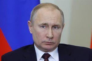 Ông Putin sa thải nhân viên, lộ nhân vật tín nhiệm