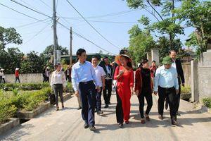 Nữ Trưởng thôn Phong Giang gương mẫu, tâm huyết