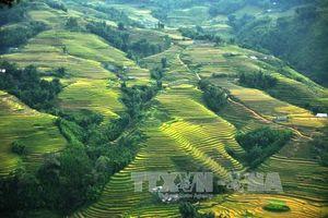 Thị xã Sa Pa sẽ thành lập trên cơ sở giữ nguyên trạng địa giới huyện Sa Pa hiện nay