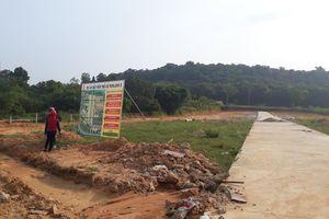 Phú Quốc ngưng cho chuyển đổi mục đích sử dụng đất phân lô, tách thửa