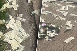 600.000 USD rơi trên xa lộ, cảnh sát kêu gọi người nhặt trả lại
