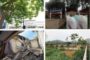 Tin tức Hà Nội 24h: Xin ý kiến về xây khách sạn Thắng Lợi cao 36 tầng; lý do cô giáo đánh học sinh