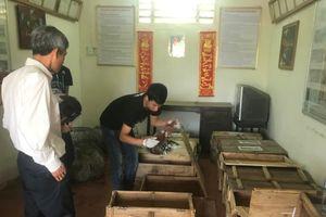 Quảng Trị: Bàn giao 15 cá thể tê tê cho Vườn quốc gia Cúc Phương