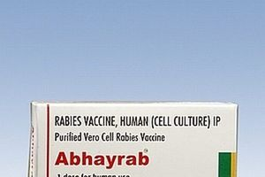 Việt Nam sắp nhập thêm 2 loại vắc-xin phòng dại