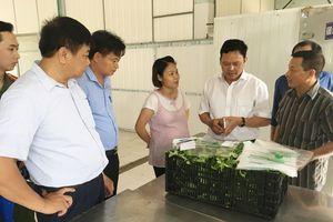 512 cơ sở sản xuất, kinh doanh thực phẩm, dịch vụ ăn uống đạt yêu cầu