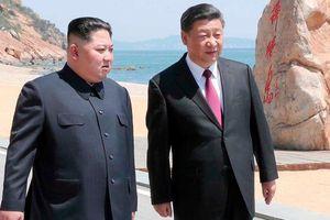 Lý do có thể khiến ông Kim Jong-un liên tiếp gặp ông Tập Cận Bình