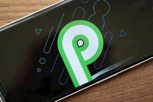 Danh sách những smartphone có thể tải Android P beta và cách tải Android P beta về smartphone