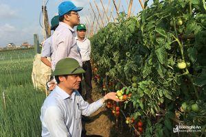 Đoàn công tác của Quốc hội khảo sát tại Quỳnh Lưu