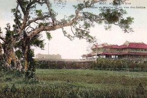 Ngắm kinh thành Huế xưa trên bưu thiếp thời thuộc địa