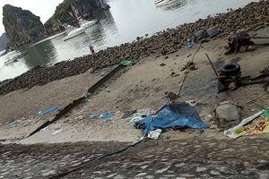 Tức mắt với váng dầu và rác thải ven vịnh Hạ Long