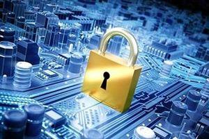 Diễn tập an toàn thông tin mạng trực tuyến quy mô nhất Việt Nam