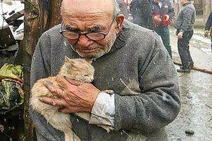 10 bức ảnh khiến bạn 'khóc hết nước mắt' vì những câu chuyện ẩn sau