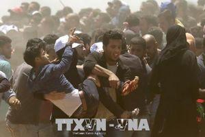 Palestine kêu gọi đình công ở Bờ Tây và Gaza