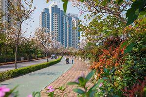 Bất động sản sinh thái Hà Nội có đúng chuẩn xanh?