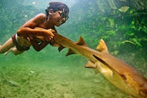Những 'người cá' trong đời thật