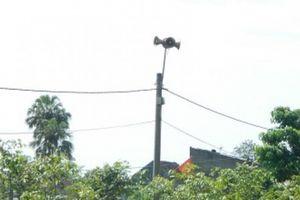 Hà Tĩnh: Loa phát thanh nhiều sóng 'lạ' trong nhiều giờ