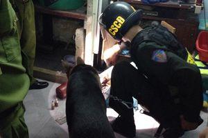 Ngăn chặn tội phạm ma túy nơi cửa ngõ thành phố