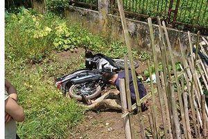 Đánh nghi can trộm cắp tử vong, 2 người bị bắt giữ