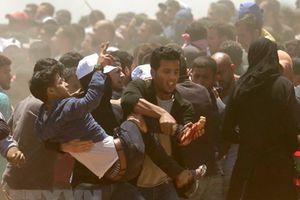 Điện chia buồn về vụ đụng độ làm nhiều người Palestine thiệt mạng